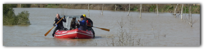 Emergencias 112 niega una lancha para salvar a varios perros rodeados por el agua desbordada del Ebro
